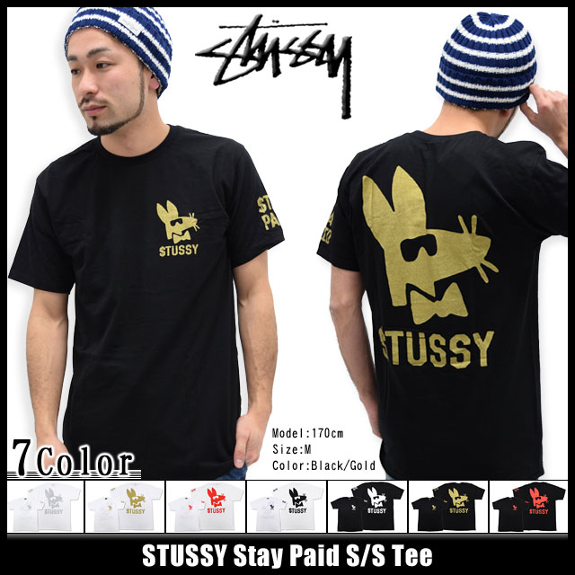 Stussy STUSSY Stay Paid T shirt short sleeve (stussy tee tee shirts T-SHIRTS tops mens, men's 1903526 Stussy stussy Stussy Steacy) ice filed icefield