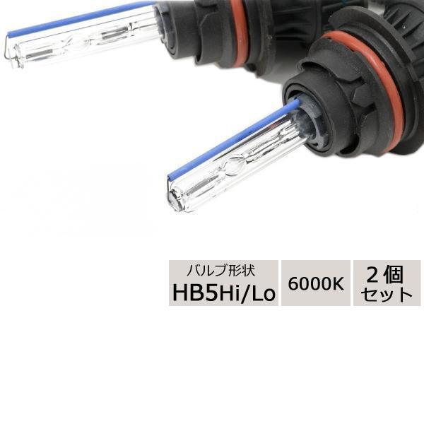 LYZER HIDバーナー HB5Hi/Lo 6000K 2個セット B-0095【同梱・代引き不可】