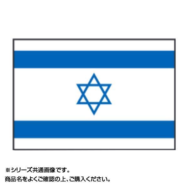 世界の国旗 万国旗 イスラエル 90×135cm【同梱・代引き不可】
