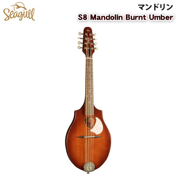 マンドリン 素晴らしい弾き心地とサウンド SEAGULL S8 Mandolin Burnt Umber 【代引不可】【同梱不可】