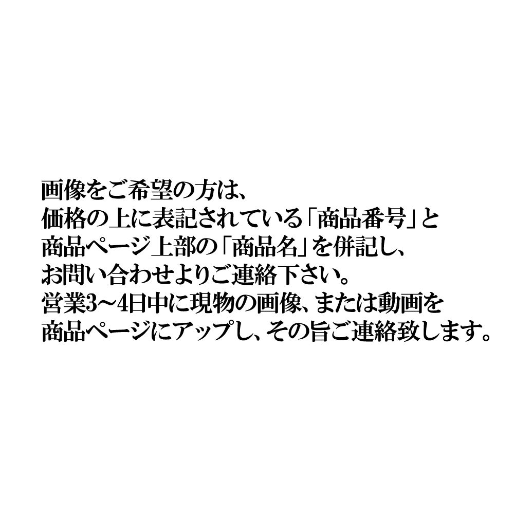 タイガー琉金ショートテール中国 (大) 【販売単位:1尾】