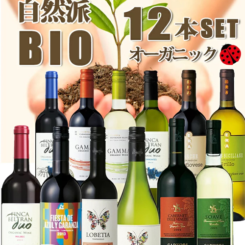 ワインセット ビオワインだけの12本セット 送料無料 自然派ワイン12本 夢の競宴