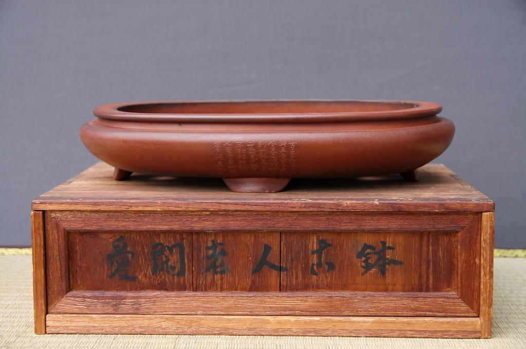 (株)一樹園     【 愛閑老人 】  共箱付き  紫泥袋式外縁楕円鉢