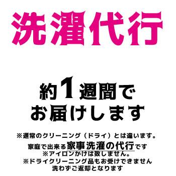 北海道以外からのお客様はキャンセルとなります 代引き不可 評判 送料無料 洗濯代行 ※北海道限定