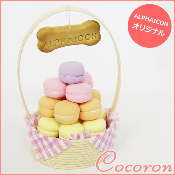 【ALPHAICON アルファアイコン】ALPHAICON×COCORON