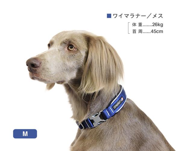 【ALPHAICON アルファアイコン】スピンドリフト NEW セーフティカラー M