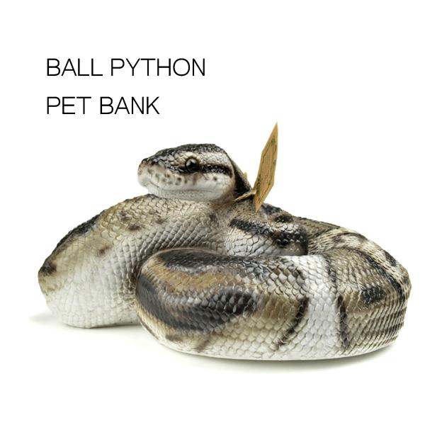 ペットバンク BALL PYTHON 貯金箱 magnet ボールバイソン ヘビ スネーク ニシキヘビ