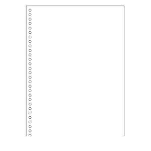 ヒサゴ BP2049Z A4白紙30穴