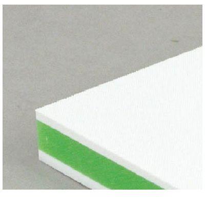 三洋化成 CKG20M カラー抗菌業務用まな板 CKG-20M