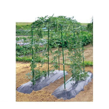 【個数:4個】第一ビニール 4968438019987 【4個入】 空中栽培つる棚セット