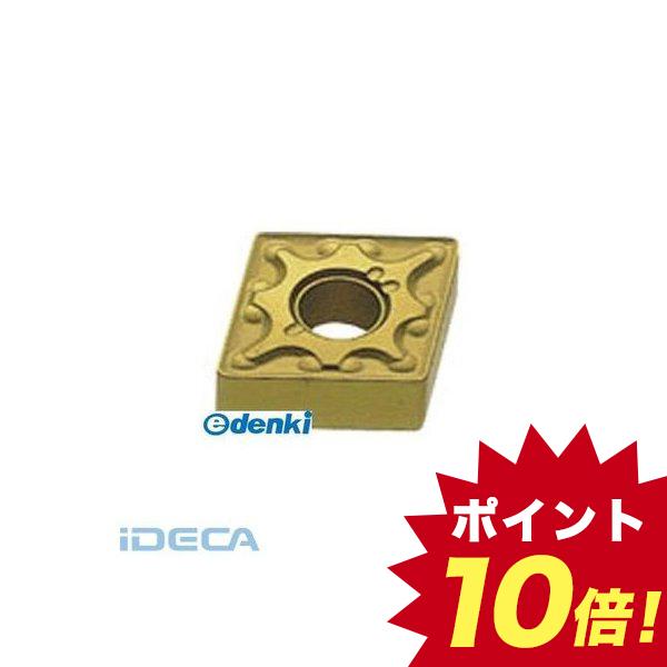AR69081 チップ COAT 【10入】 【10個入】