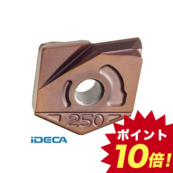 BS75055 【2個入】 カッタ用インサート ZCFW320-R1.0 PTH08M