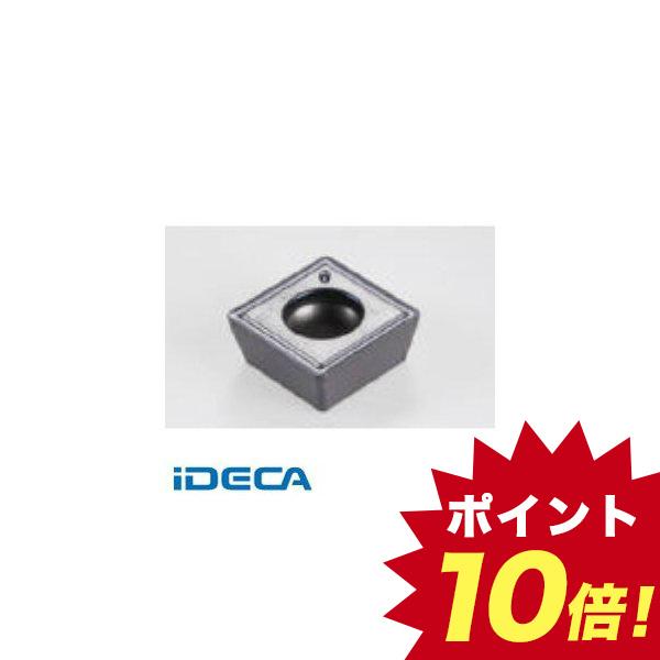 DW31424 チップ COAT 10個入 【キャンセル不可】