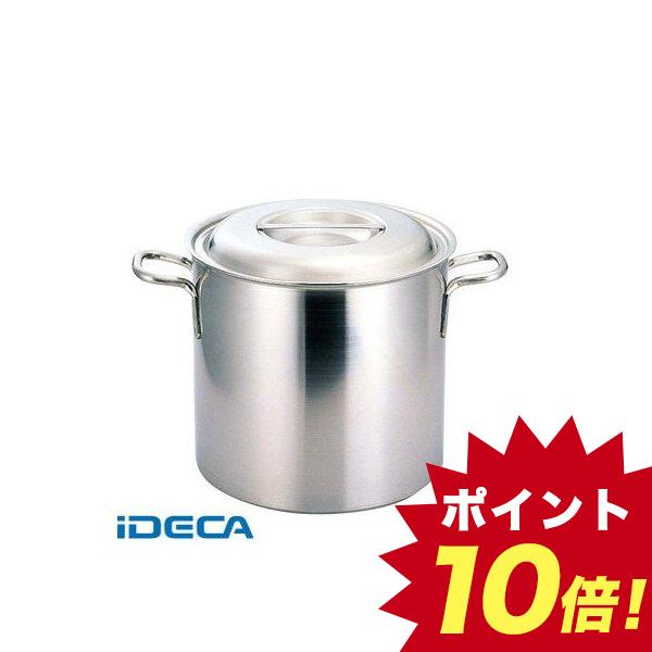 DW33363 プロデンジ 寸胴鍋 21 【ポイント10倍】