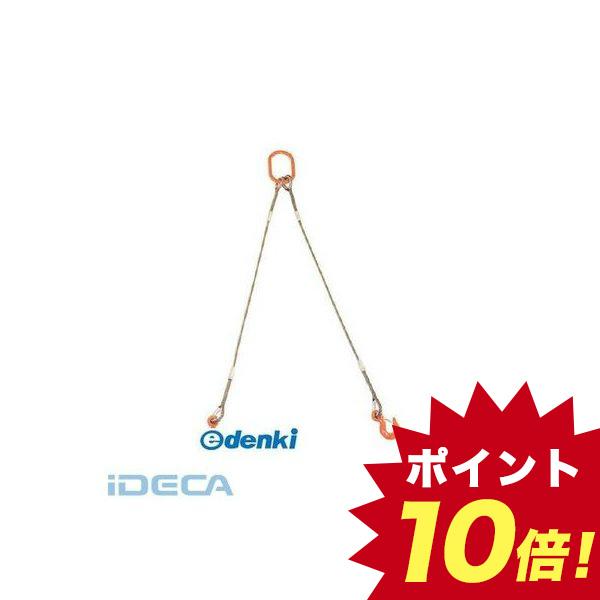 EP10236 2本吊りWスリング フック付き 9mmX3m