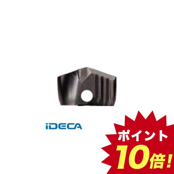 ER21391 WS用チップ COAT【キャンセル不可】