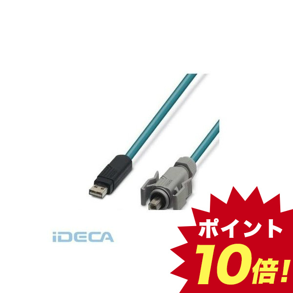 ES84596 パッチケーブル - VS-04-2X2X26C7/7-67B/SDA/2,0 - 1653919