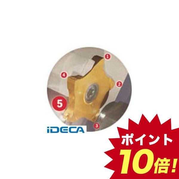 GV73580 X PC多/チップ COAT 5個入 【キャンセル不可】