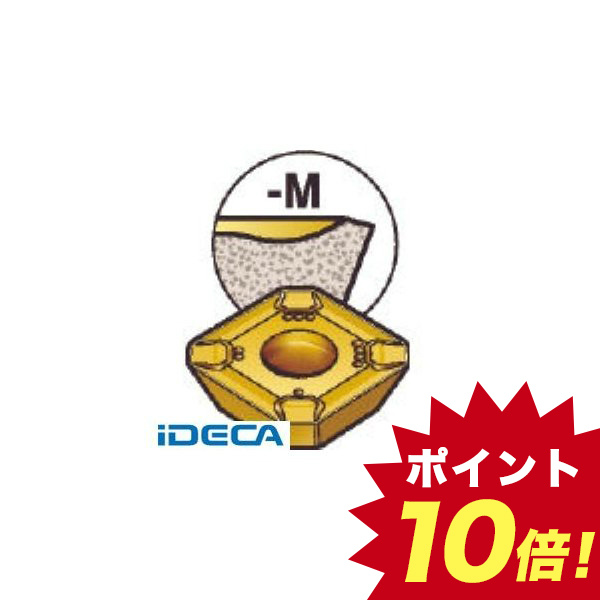 HV85625 チップ ステン 10個入 【キャンセル不可】