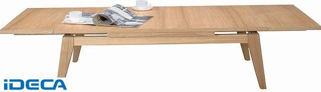 【個数:1個】EV52213 「直送」【代引不可・他メーカー同梱不可】 コパン エクステンションテーブル