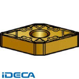 DW98114 チップ COAT 10個入 【キャンセル不可】