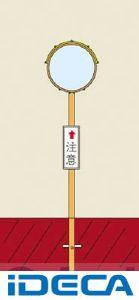 DN74626「直送」【代引不可・他メーカー同梱不可】 丸SS60【キャンセル不可】