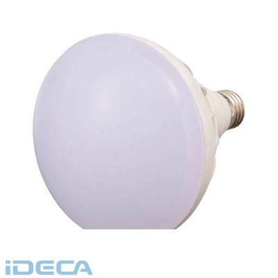 FN72908 LED投光器用 20W LED球