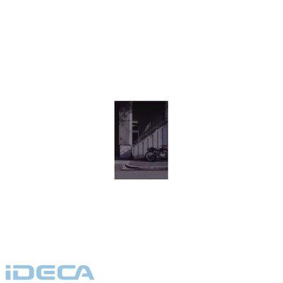 【あす楽対応】【個数:1個】EP19967 日照調整用内貼りフィルム1.2M×1.8M