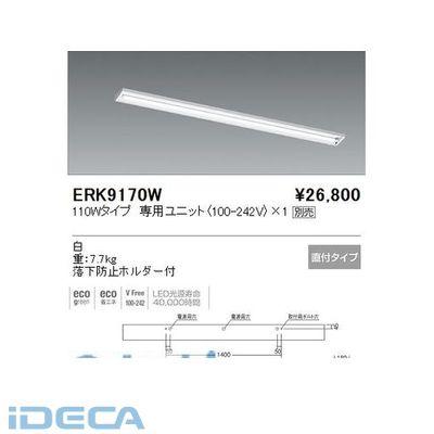 FN67940 直付/ウォールウォッシャー/110W/1灯