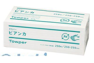KTO5801 タウパー ビアンカ L 1ケース15束入