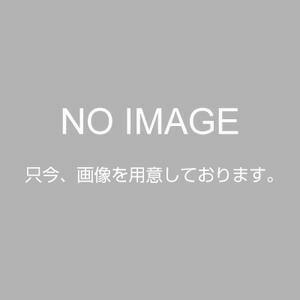 GL03376 「直送」【代引不可・他メーカー同梱不可】 ツーリングワゴン