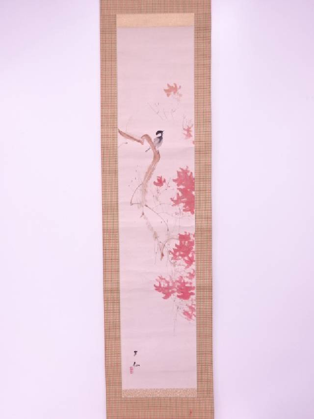 【IDnet】 日本画 作家物 紅楓小禽図 肉筆紙本掛軸(共箱)【中古】【道】