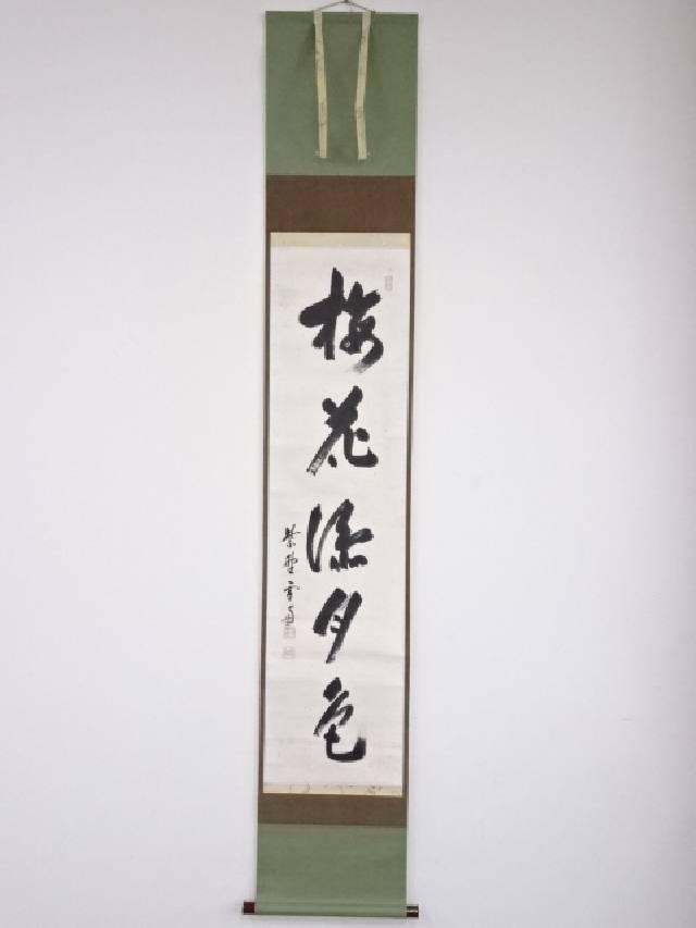 【IDnet】 大徳寺小田雪窓筆 「梅花添月色」 肉筆紙本掛軸(保護箱)【中古】【道】