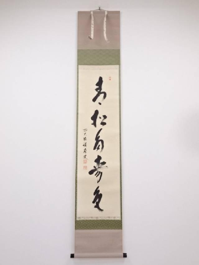 【IDnet】 前大徳 福本積應筆「青松多寿色」一行書 肉筆紙本掛軸 共箱【中古】【道】