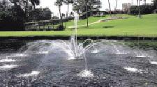 グローベン C40AQ012 フローティング噴水ジュニア ウォーターストライダー ギフトラッピング 非売品 法事 新学期 SBおゆうぎ会 金婚式