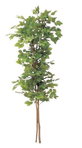 正規 ぶなの木 グローベン H1800 コンクリート台付:家づくりと工具のお店 家ファン! A70NC038B-エクステリア・ガーデンファニチャー