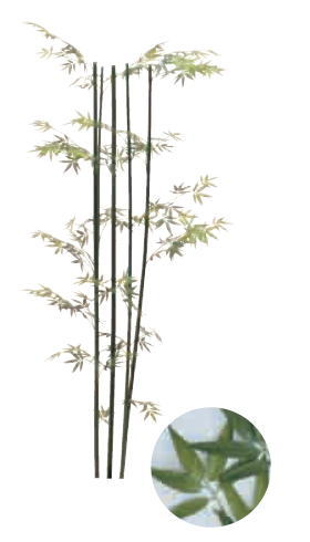グローベン A70NT065A 青竹 (5本立) H1500 鉢付
