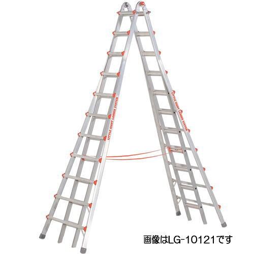 【大注目】 スカイスクレーパー 「個人宅」長谷川工業 LG-10110 (ハセガワ):家づくりと工具のお店 家ファン!-DIY・工具