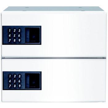 リンタツ(メーカー直送品) D-307PSW-2 集合ポスト 壁貫通型 プッシュ錠 受注生産