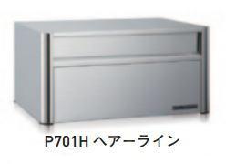 杉田エース ACE(248-420)レターボックス P701H ラッチロック錠 ヘアーライン