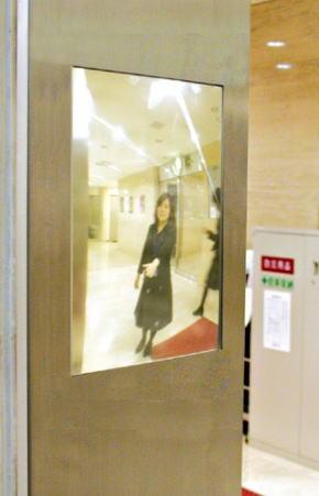 杉田エース ACE (691-255) FFミラーEVE(イヴ) EVL16AT エレベーター三方枠/室内専用