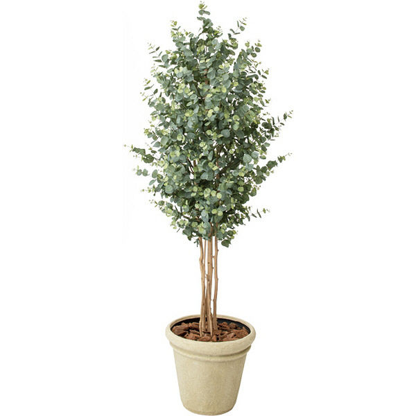(直送品)タカショー GD-231 ユーカリツリー 1.8m (人工観葉植物) 21157900