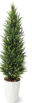 (直送品)タカショー GD-234LL ゴールドクレスト ライトグリーン 1.7m (人工観葉植物) 33404900