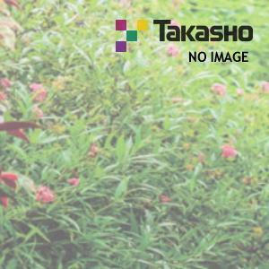タカショー 17819300 金閣寺垣フェンスL型 新ゴマ竹H900用端部部材セット