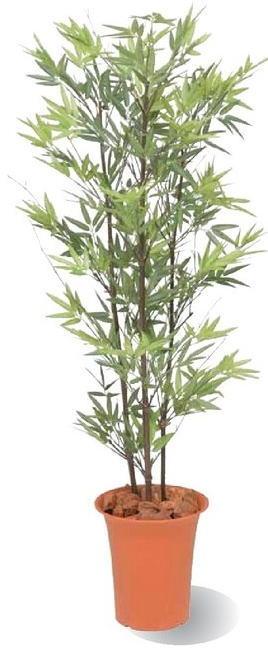 タカショー 観葉植物・グリーンデコ鉢付 黒竹 1.2m GD-169