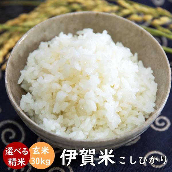 伊賀米コシヒカリ 令和元年産 玄米30kg(10kgx3袋) 送料無料 |米ぬか無料 精米無料 白米 無洗米 3分づき 5分づき 7分づき 胚芽米 こしひかり|