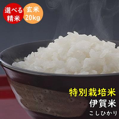 【特別栽培米】伊賀米コシヒカリ 令和元年産 三重県伊賀産 玄米20kg(10kgx2袋) みえの安心食材認定米 有機肥料使用|米ぬか無料 精米無料 白米 無洗米 3分づき 5分づき 7分づき 胚芽米|