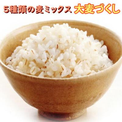 国産 大麦づくし 送料無料 420g×10(4.2kg) 5種類の麦ミックス 麦飯 雑穀米 大麦ごはん 押麦 胚芽押麦 米粒麦 ビタバーレ 純麦