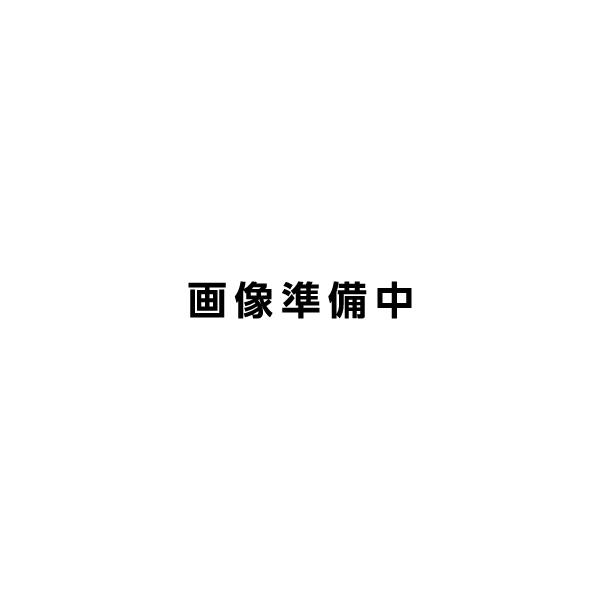 GEAR TOP ギア トップ 手彫り七面彫刻 SV シルバー 透明アクリルケース付 GT-ARM 日本製 MADE IN JAPAN オイル ライター 【お取り寄せ】【02P03Dec16】