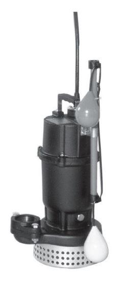 【本日特価】 エバラ 三相200V/荏原【65DSA51.5】50Hz DSA型 汚水用水中ポンプ DSA型 三相200V, アクネシ:c1ef9ec5 --- hortafacil.dominiotemporario.com